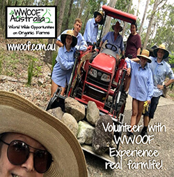 Experience real farm life with WWOOF - World Wide Opportunities on Organic Farms - Experience real farm life
