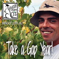 Do a Gap year with WWOOF - World Wide Opportunities on Organic Farms
